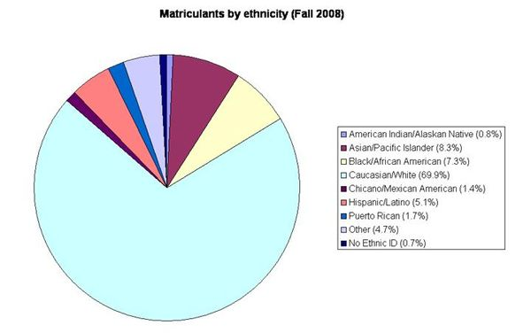 Ethnicity chart Fall 2008